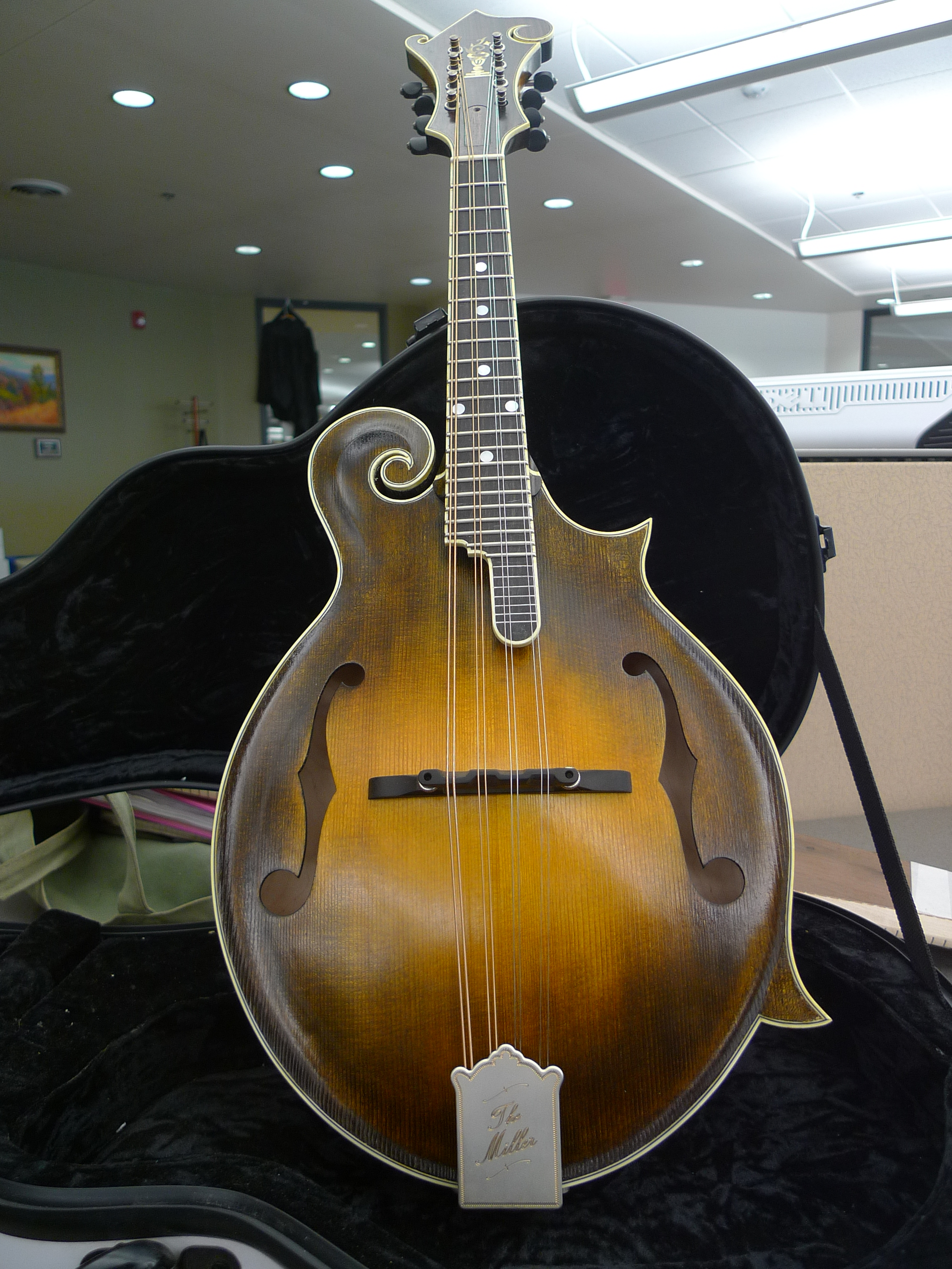 F5 Mandolin Kit Build Chris Miller Guitars